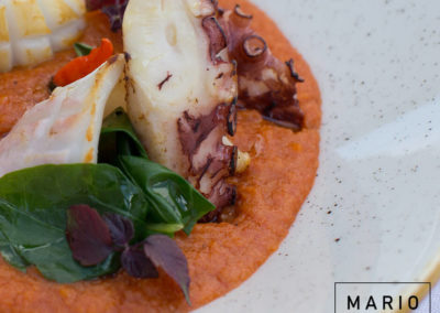 Pappa al pomodoro, polpo, calamari e spinacino